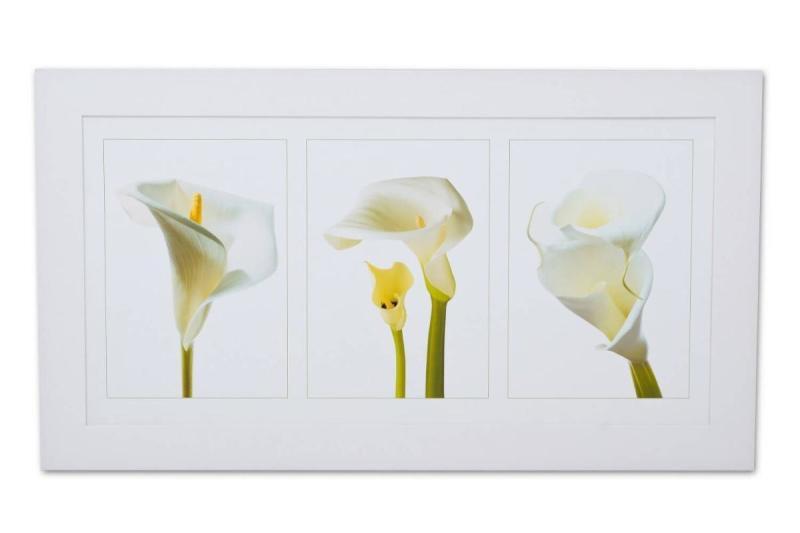 Quadro Flor Copo De Leite 110x60cm